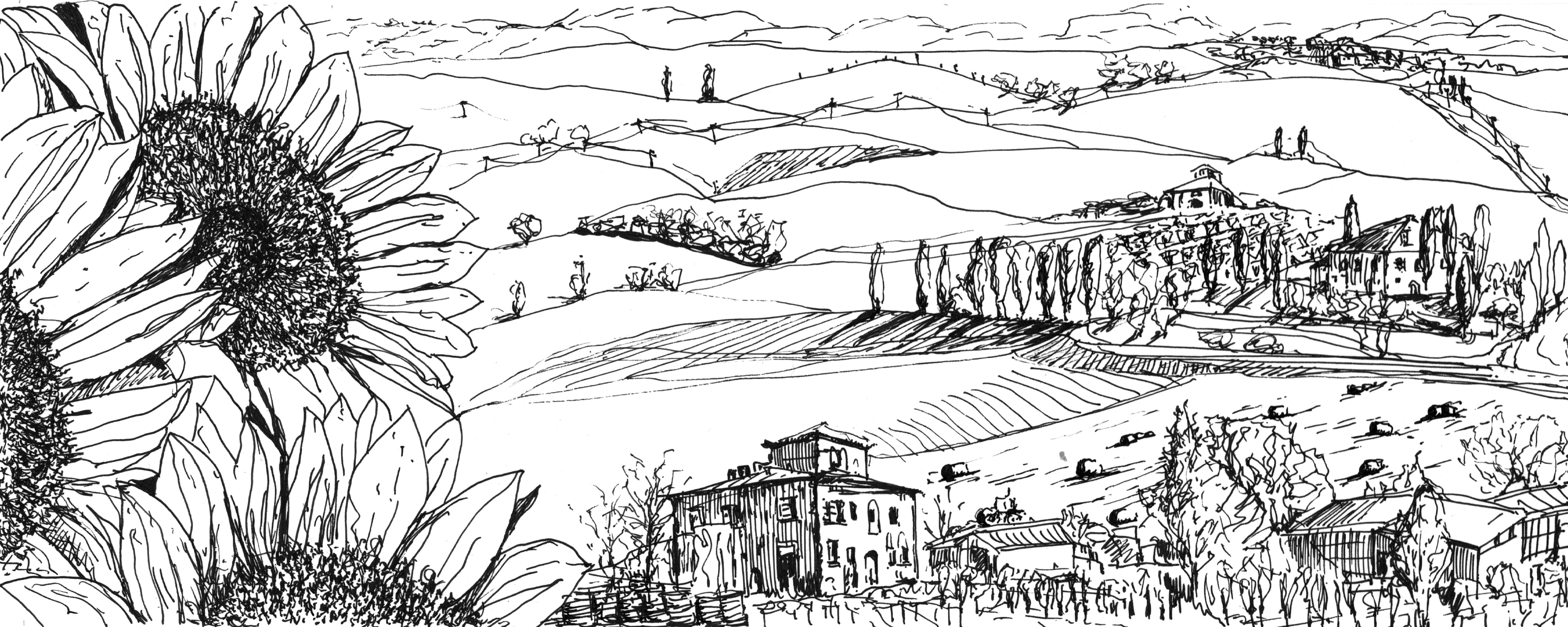Colline Valle D'Orcia