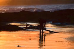 Wategos Beach Surfer