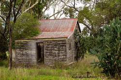 Canning Creek Pioneer Hut