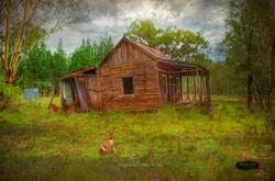 Turallin, SE Qld Pioneer Hut