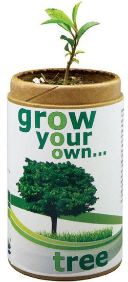 Grow Your Own Tree