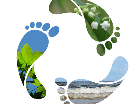 5 Ways to Reduce Your Carbon Footprint (In The Office)