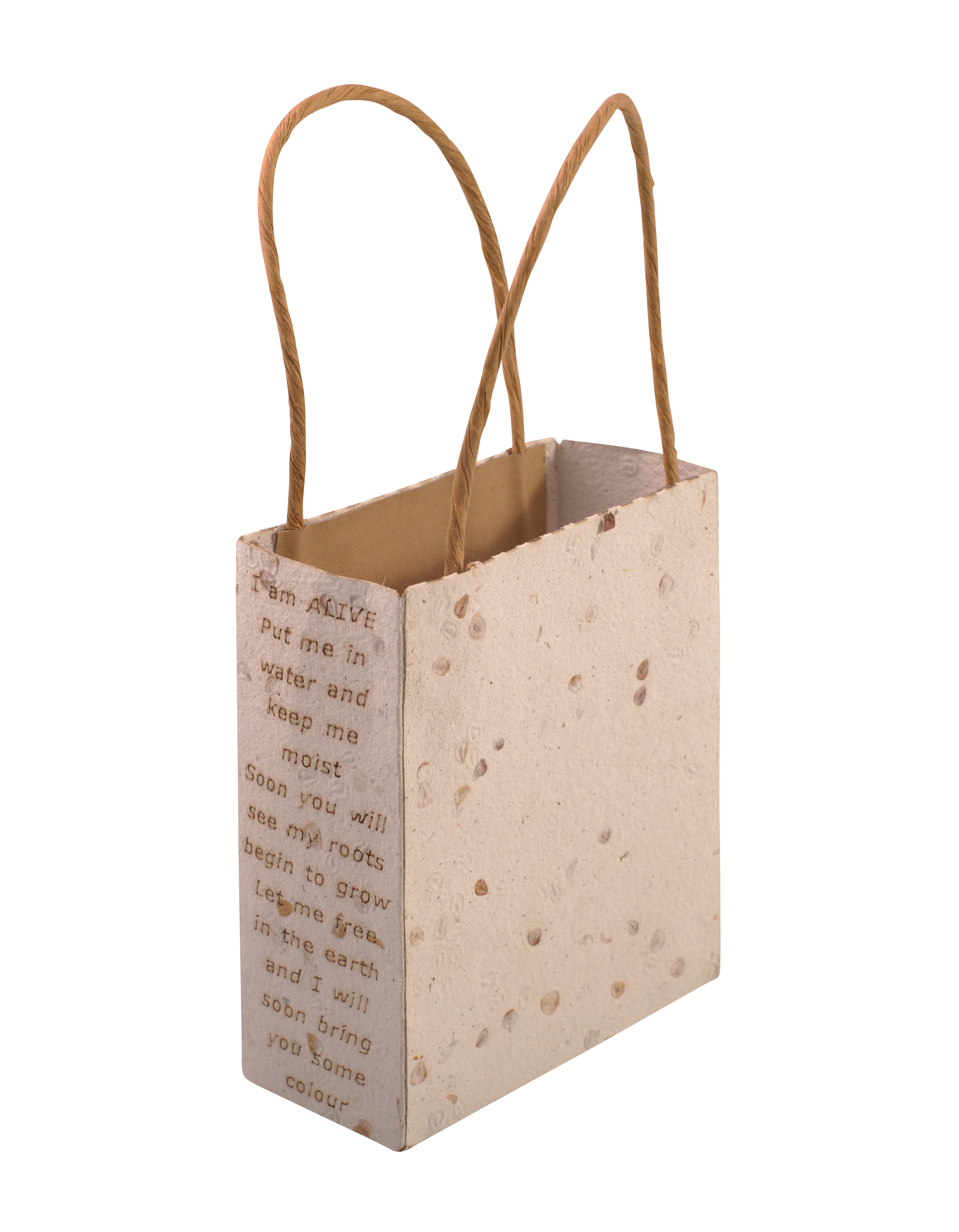 Seeded Paper Bags