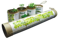 Indoor Herbal Garden