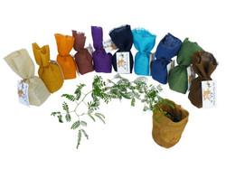 My Tree Rainbow Starter Packs