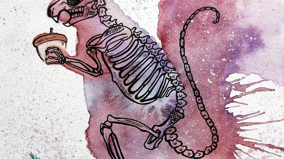 Squirrel Skeleton Print