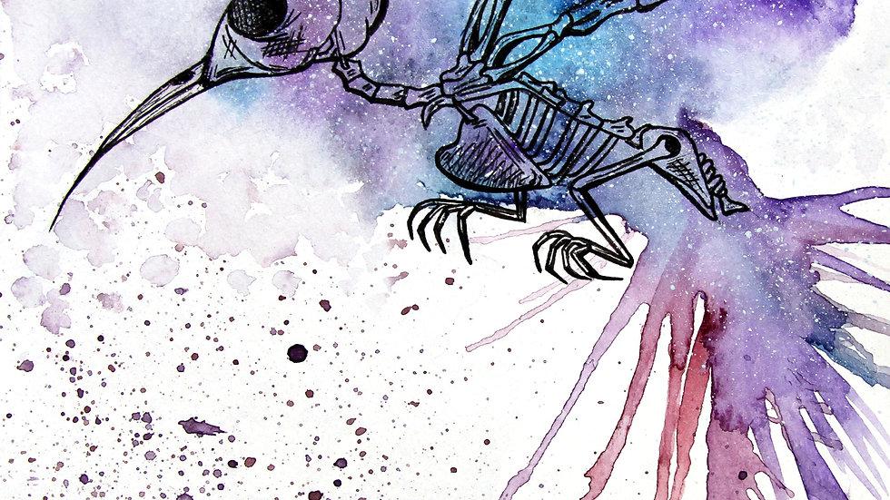 Hummingbird Skeleton Print
