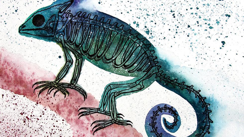 Chameleon Skeleton Print