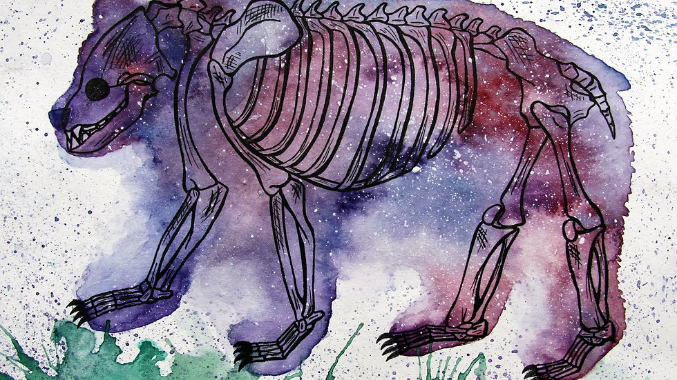 Bear Skeleton Print