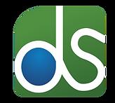 Logo Data y service_edited.png