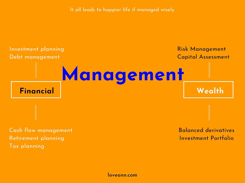 Wealth management vs financial management