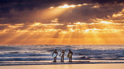 muriwai-beach-auckland-new-zealand