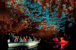 Waitomo+Glowworm+Caves3