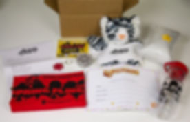 Custom Shippable Novelty Box 1.jpg