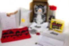 Custom Shippable Novelty Box 5.jpg