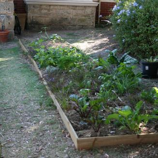 Gardenbed after a few weeks