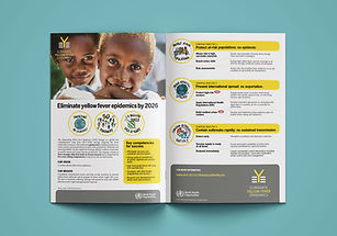 Redesign of the Eliminate Yellow Fever programme governance and work plan
