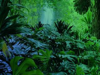 Ecosistemas terrestres de México Selvas húmedas