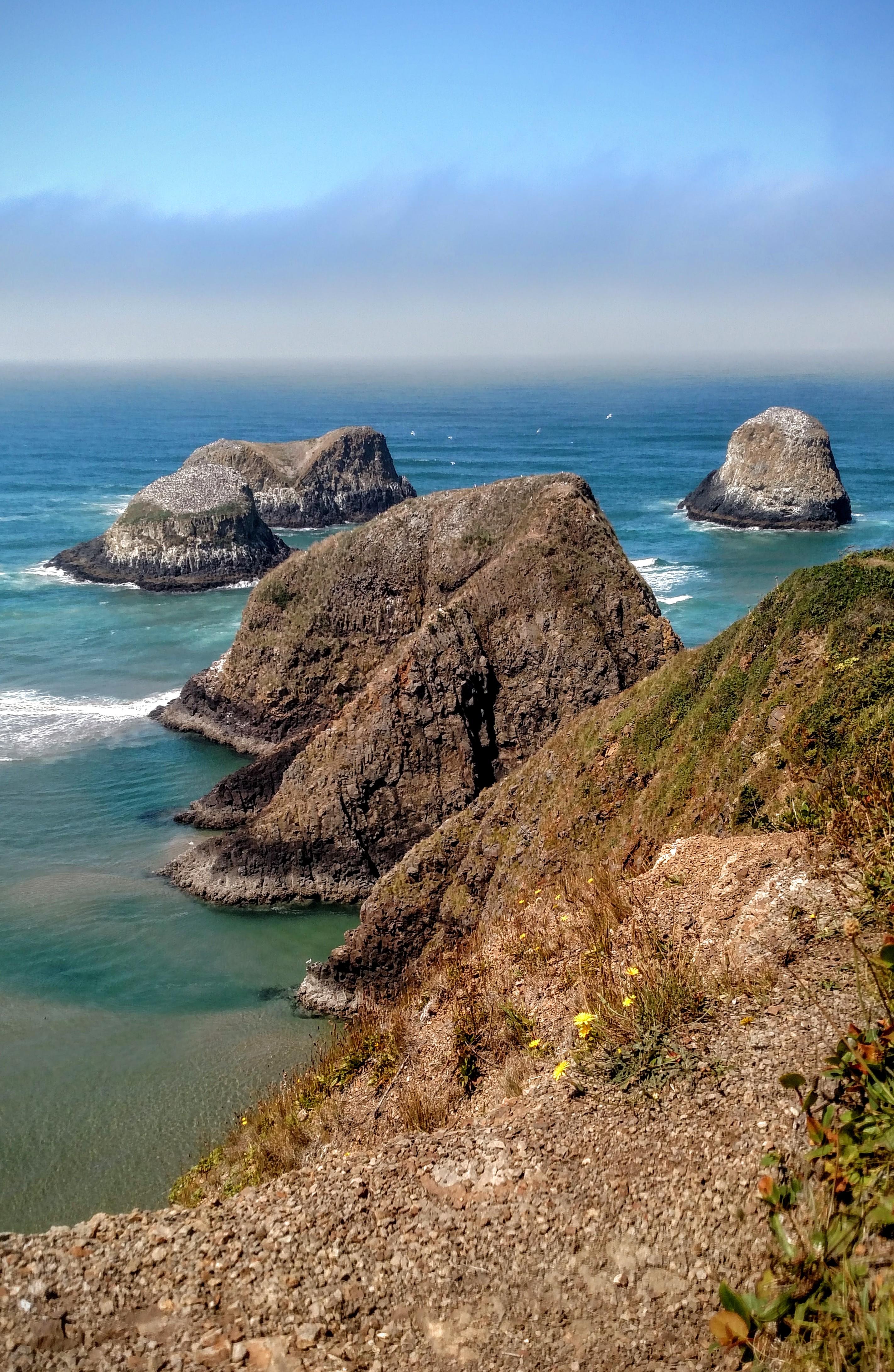 Chapman Point and Bird Rocks