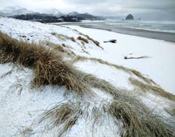 Blizzard on the Beach