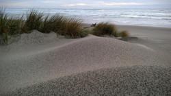 Rain on the Dunes