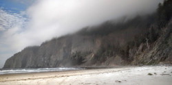 Cape Lookout Wrapped in Fog