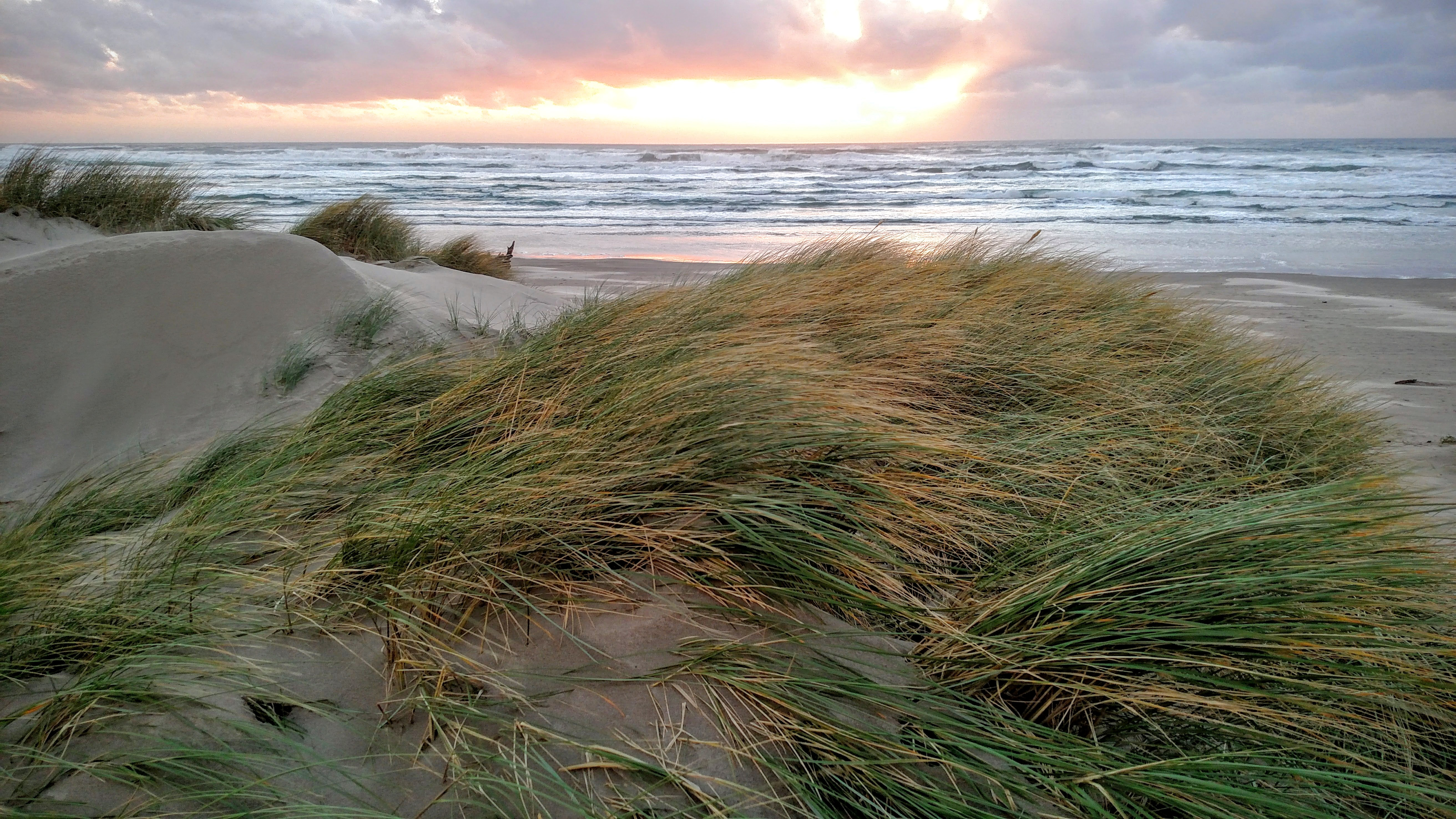 Chapman Beach Sand Dunes