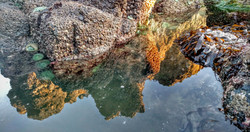 Tidepool Reflection