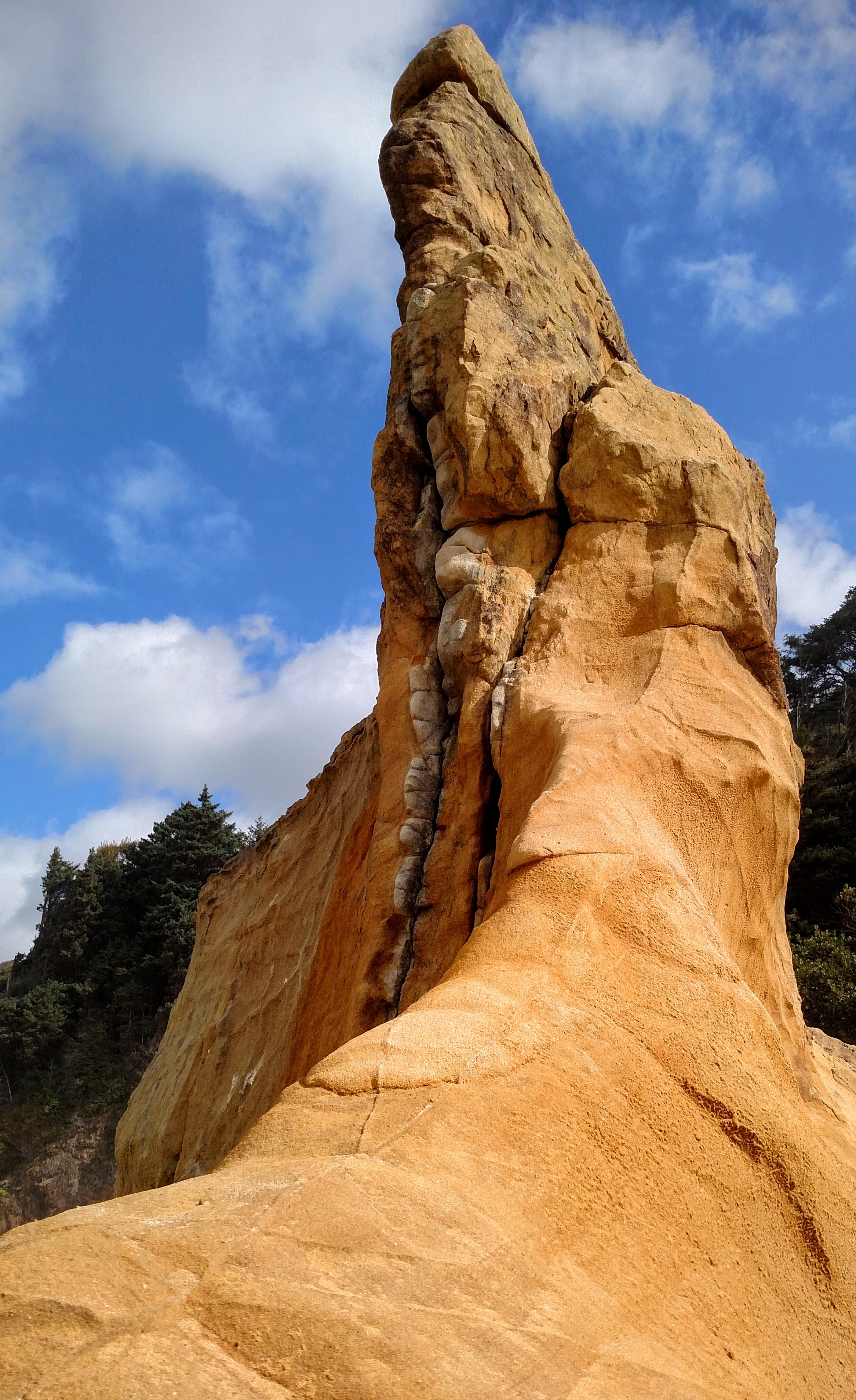 Sea-sculpted Sandstone
