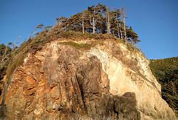 Sea Cliff at Hug Point