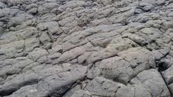 Field of Frozen Lava