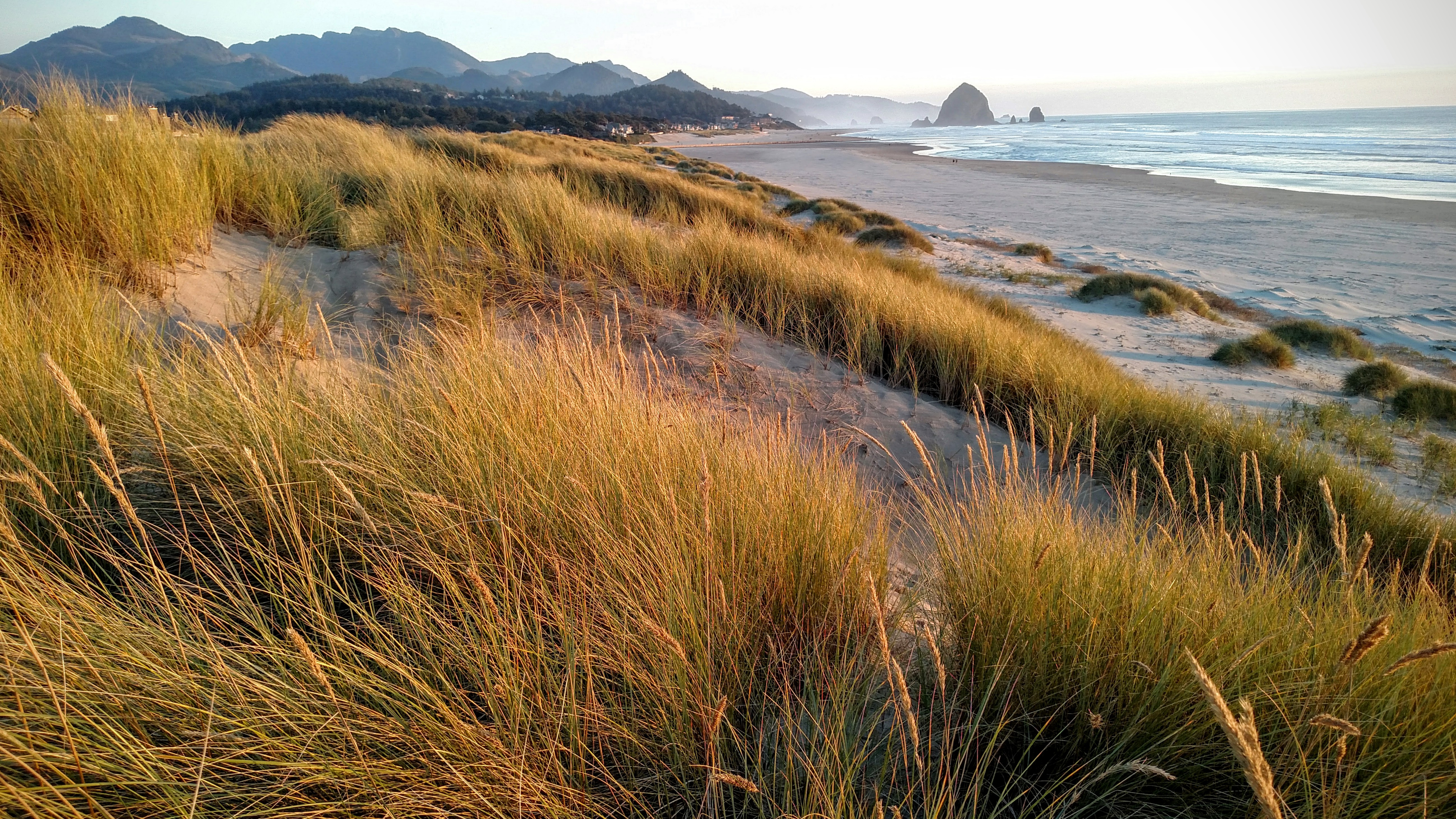 Chapman Point Sand Dunes