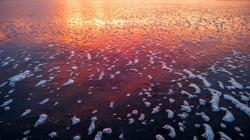 Sunset on Foamy Shore
