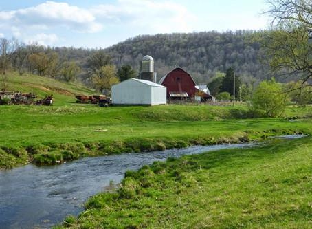 Blue River Habitat Improvement Project