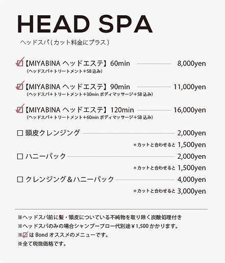 HEADSPA.jpg