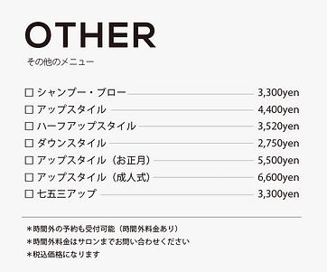 menu_other.png