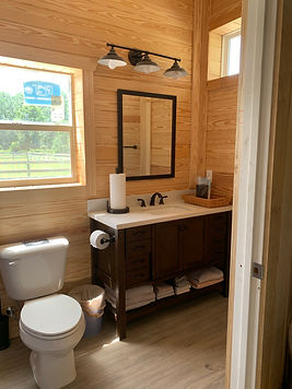 Bathroom pre-stain.jpg