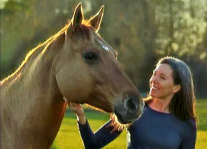 A New Era in the Horse-Human Relationship (Guest post by Kim Hallin)