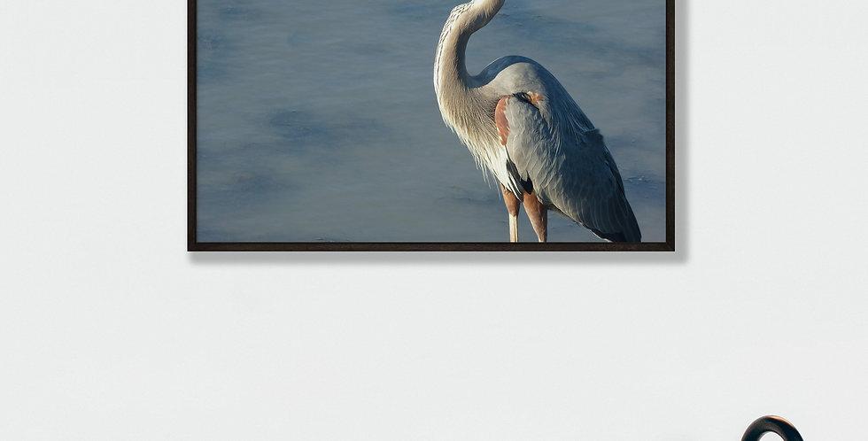 Great Blue Heron Framed Print 16 x 20