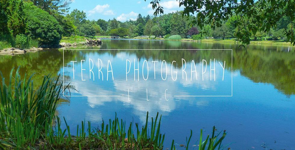 Pretty Pond Print