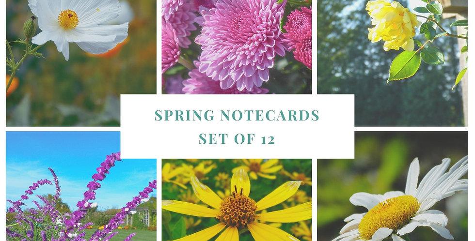 Spring Flower Notecard Pack with Envelopes Set of 12