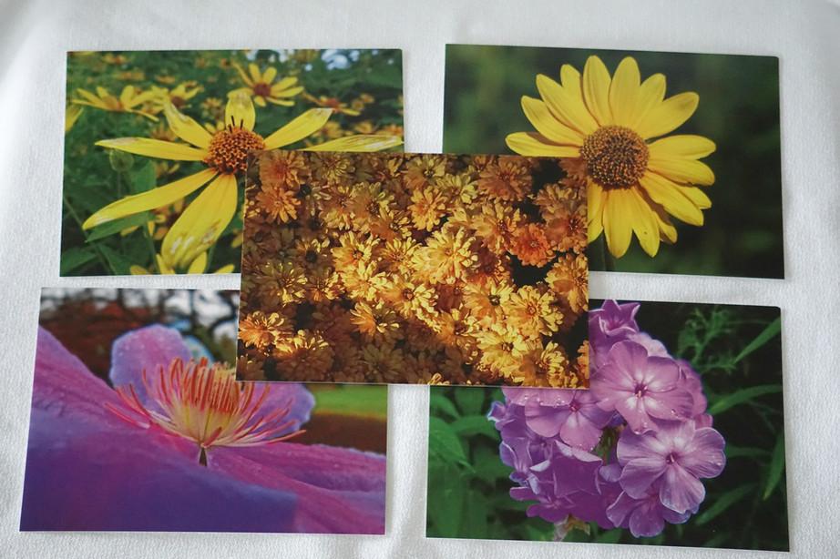 FlowerPostcards.JPG