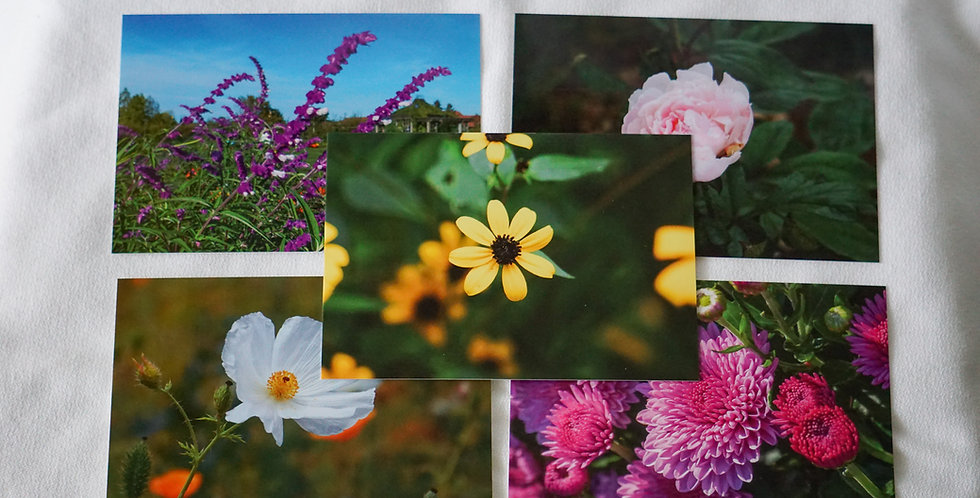 Flower Postcards Set of 10 Variety Pack Series 2 | Stationery