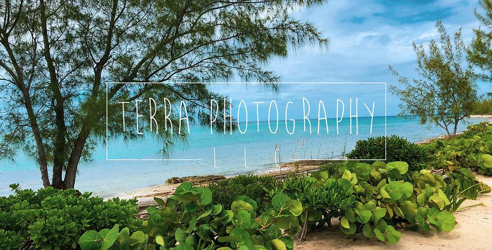 Bahamas Island Beach Print
