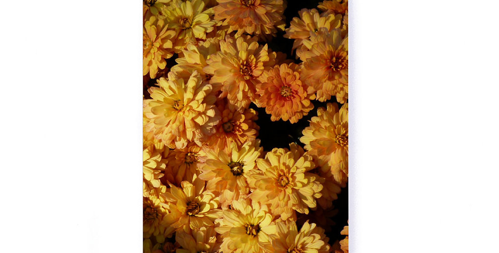 """Golden Floral Softcover Notebook 5.25"""" x 8.25"""" with Dot Grid Pages"""