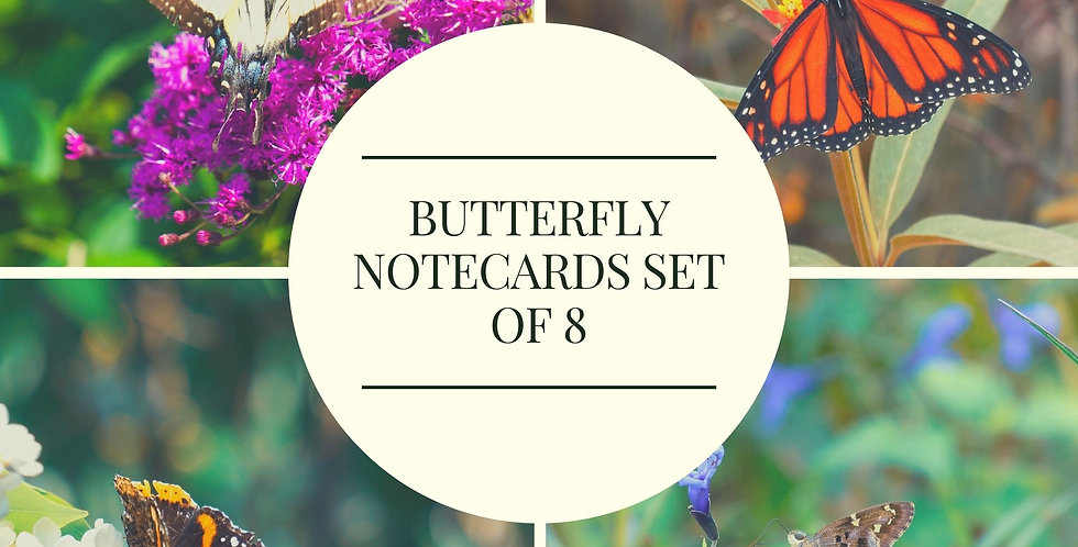 Butterfly Notecards with Envelopes Set of 8