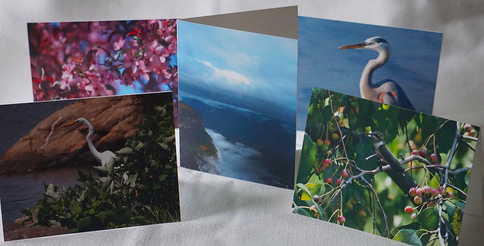 Custom Order | Single Glossy Greeting Card With Envelope