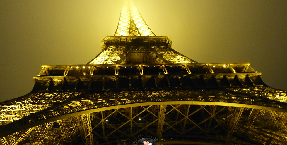 Golden Eiffel Tower Print