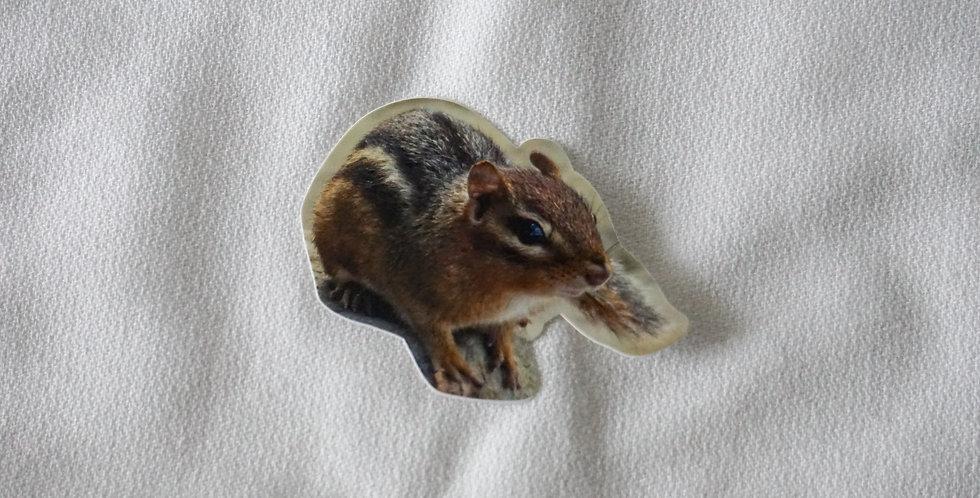 Chipmunk Vinyl Die Cut Sticker