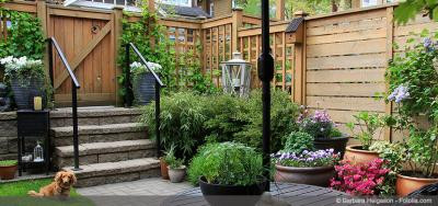 How to Make a Big Statement With a Small Yard